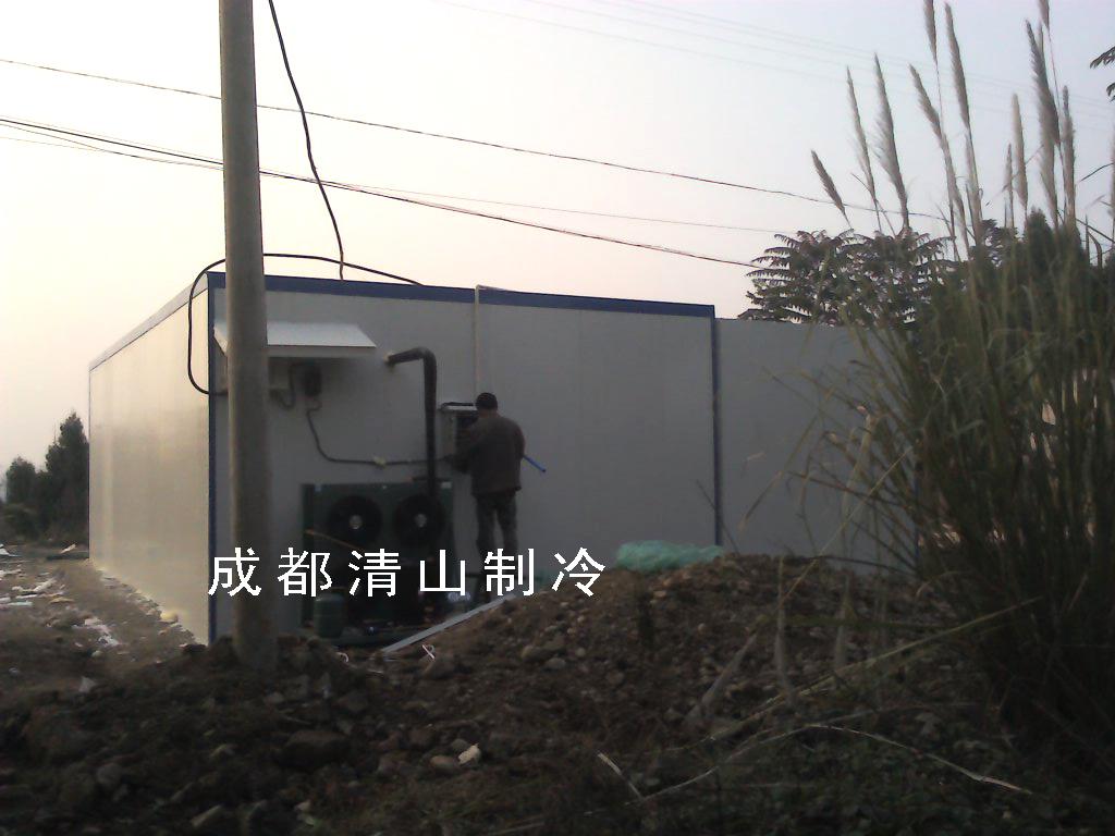 图为本公司2013年某个体户设计安装的枣子冷库(温度0-6度)!
